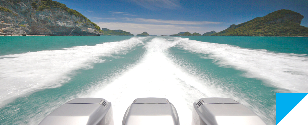 Pro Marine Services - Over 15 years of boating repairs and maintenance experience.
